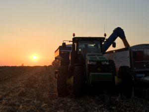 Midwest corn harvest