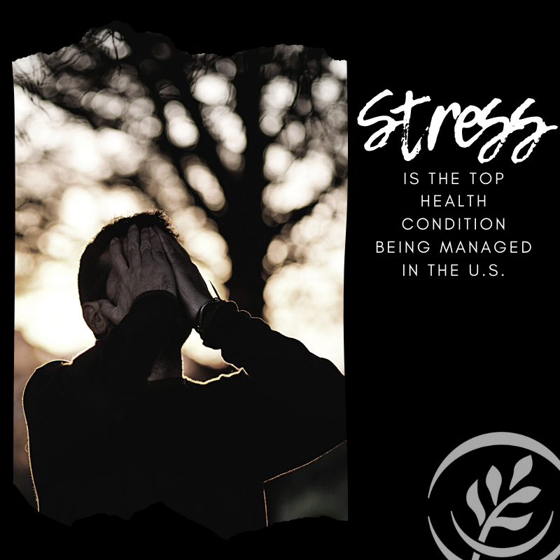 Stress in agriculture
